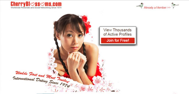 Cherry blossom dating asia site